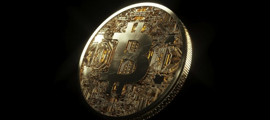 As You Accumulate Bitcoin or Cash, Where Should Startups Invest It?