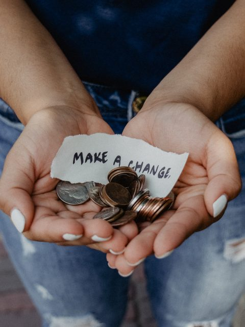 startup nonprofit