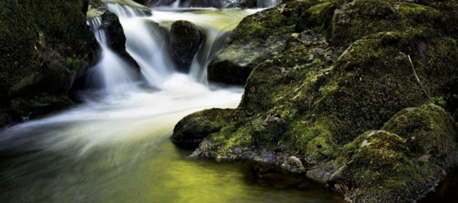 Wellness & Meditation Retreats in Ireland – Retreats for Relaxation