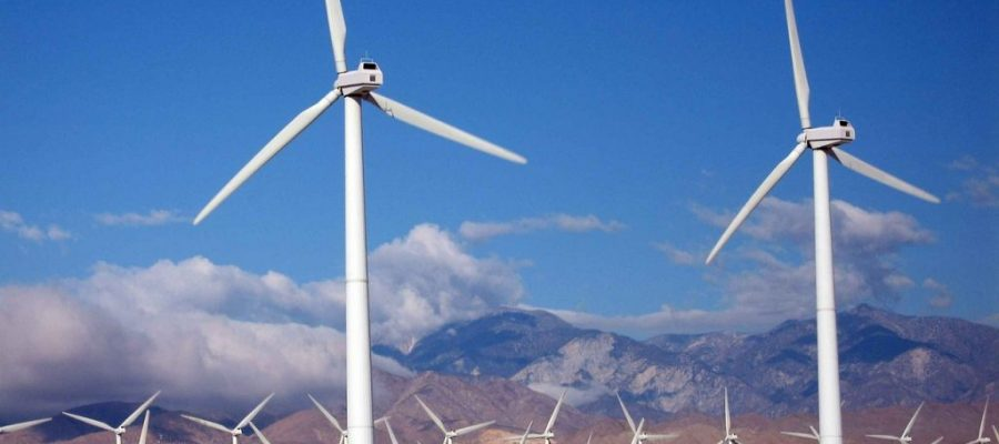 Wind Farm Business: Startup Considerations