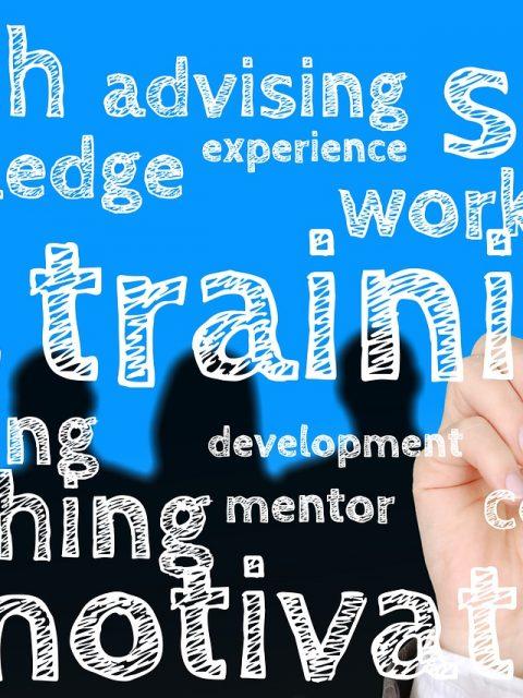 online business education