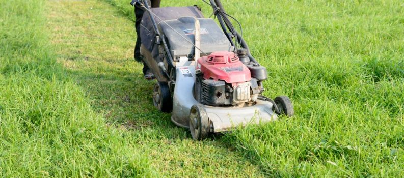 Local Marketing Tips For Your Lawn Care Business