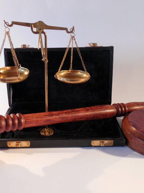legal career